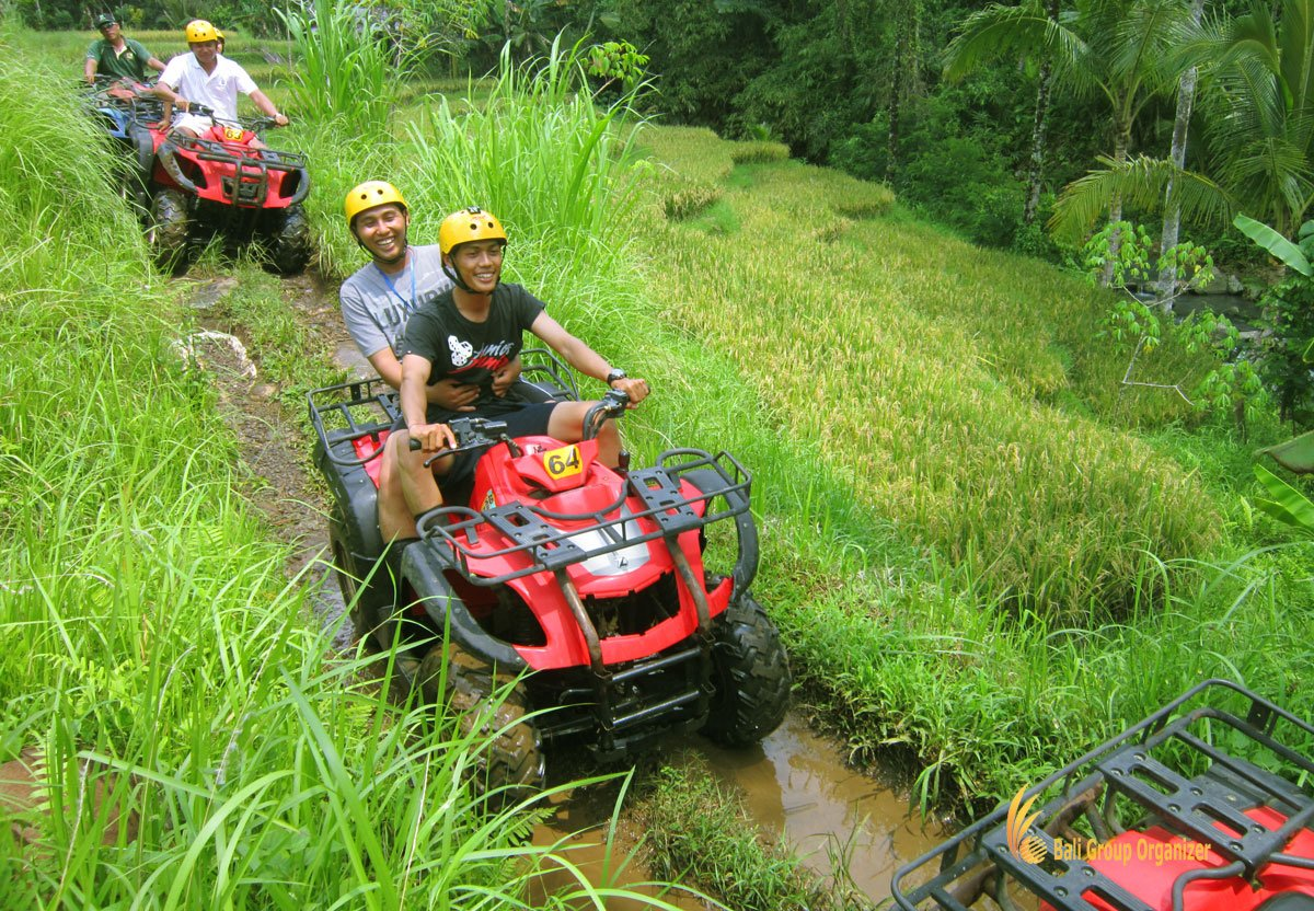 atv, riding, treasure hunt, rice field