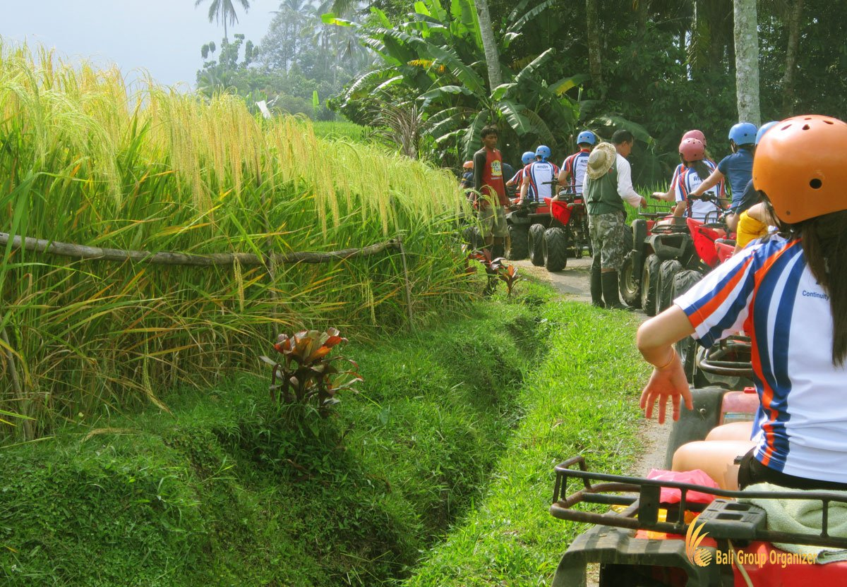 atv, riding, bali, group, organizer, trips