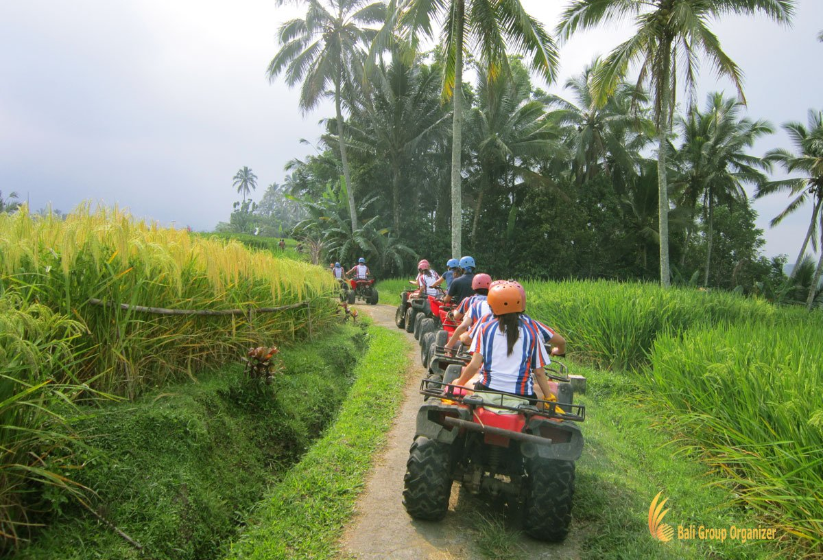 bali, atv, riding, rice, paddy, treasure hunt