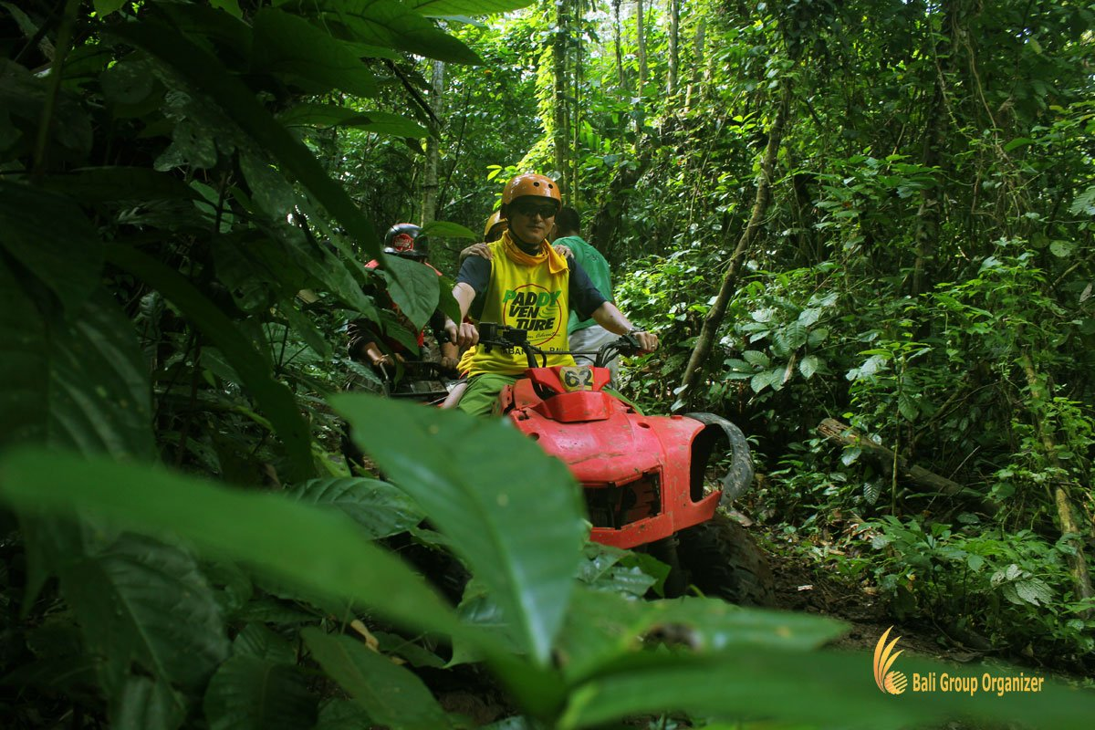 atv, riding, jungle, exploration, bali