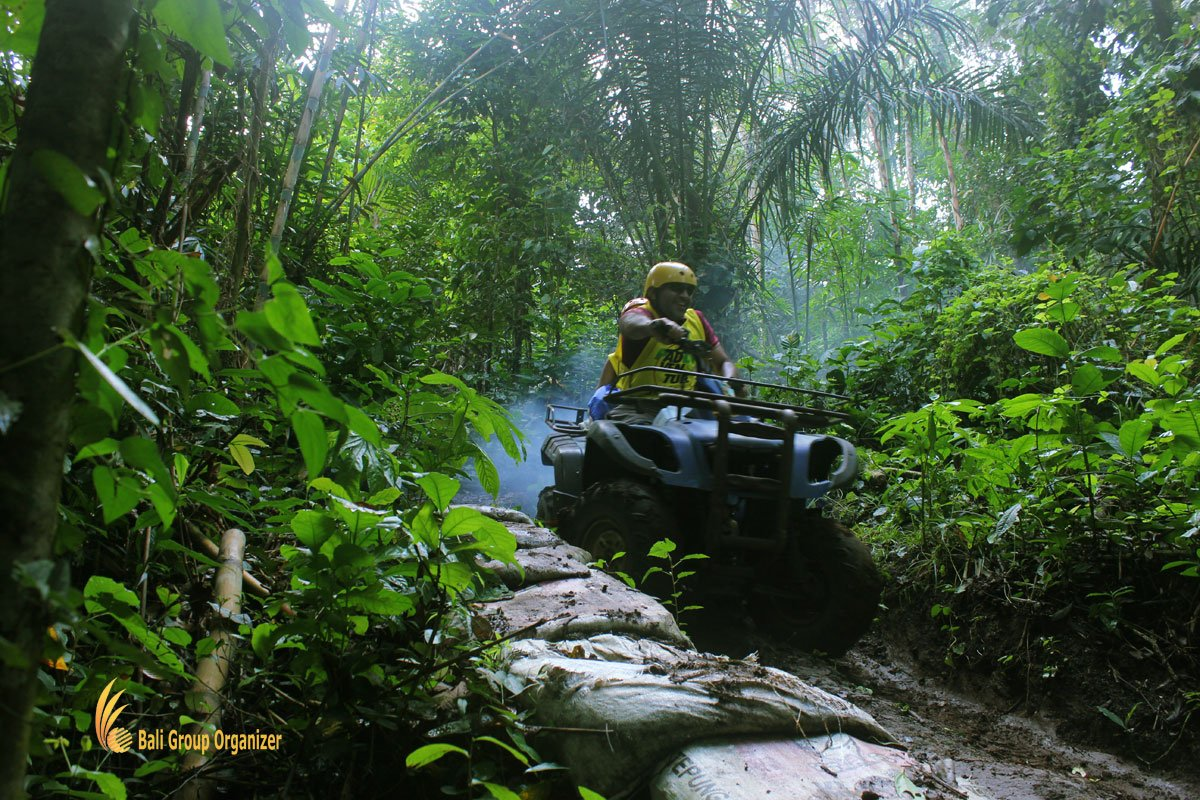 jungle, atv, riding, bali