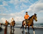 bali, horse riding, adventures