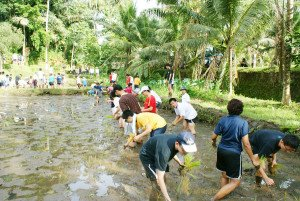ACSI International School, Singapore, Farming Program