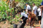 bali, csr, corporate social responsibility, activities, programs, bali csr, csr programs, csr activities, charity, gardening