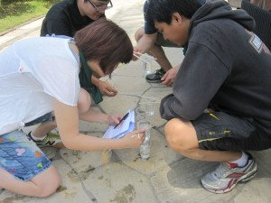 Emerson Climate Technologies Garden Team Building Treasure Hunt Phase Water Pyramid Game Preparation