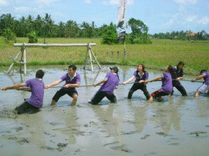 bali, muddy, land, team, building