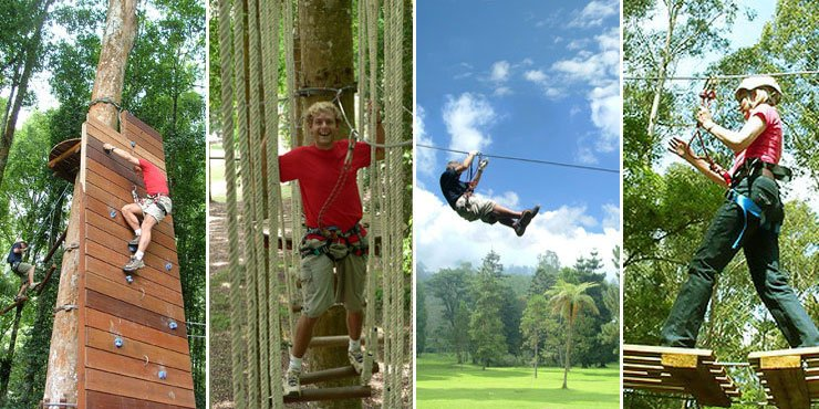Bali Treetop Adventures | Team Building Activities