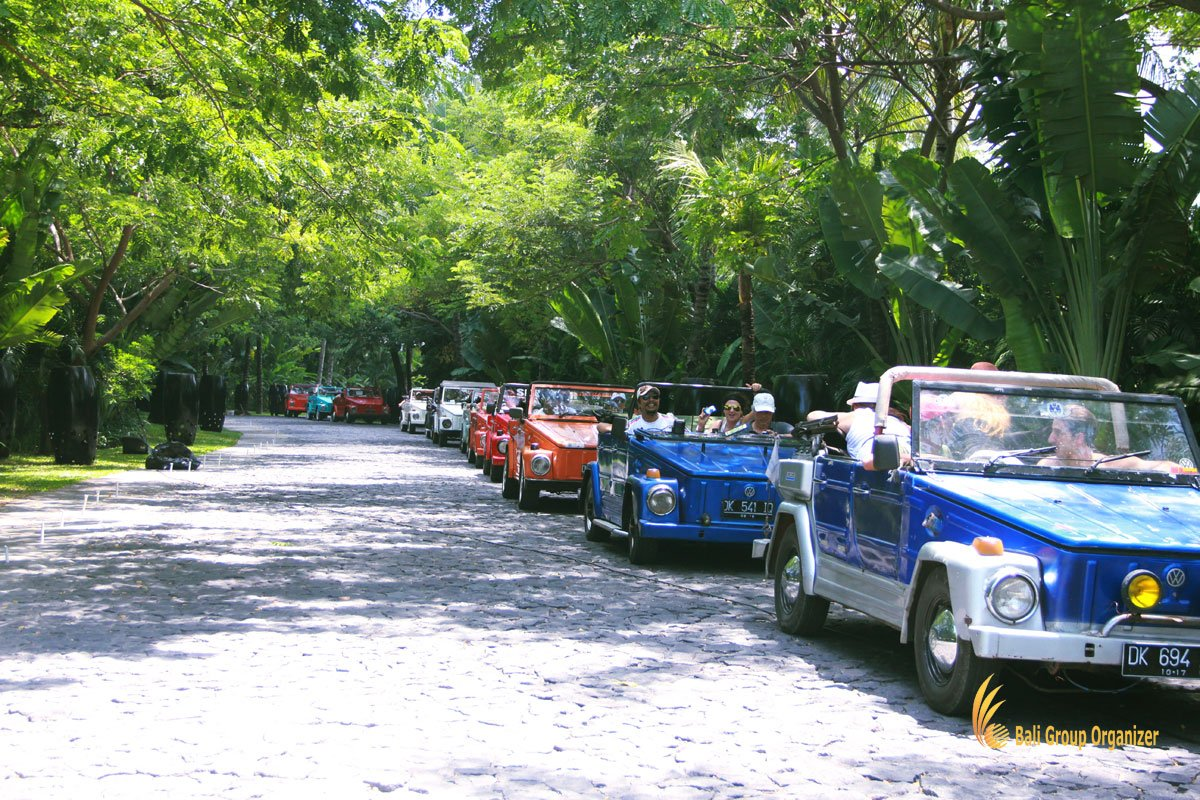 bali, vw, safari, village, group, trips