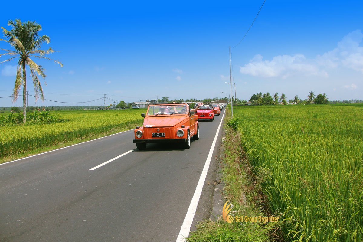 bali, vw, safari, village, fun, trips