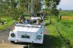 treasure hunt bali, vw, safari, fun, trips, group