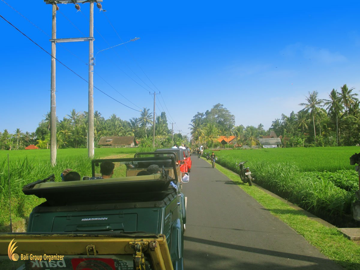 treasure hunt bali, vw, safari, village, rice, paddy, exploration