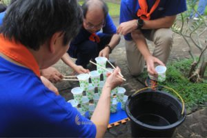 Water pyramid game, syngenta crop protection group