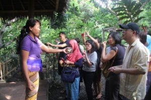 Visit to Bali Coffee Plantation