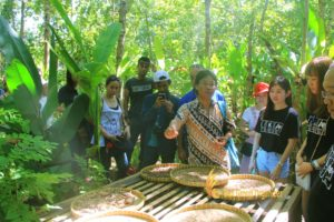 bali agro tourism, coffee plantations, ikay, ikay group