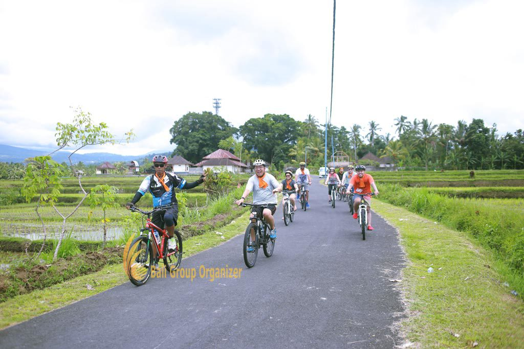 cycling games, Singapore Software Company group
