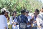 tanah lot tour, itmf, itmf conference