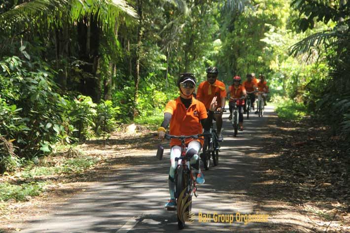 weebz mandiri experienced bali cycling team building, cycling team building, weebz mandiri, weebz mandiri group